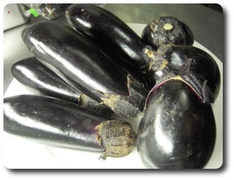 aubergine2009.jpg